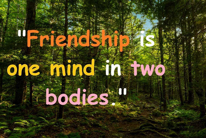 Friendship is one mind in two bodies.""